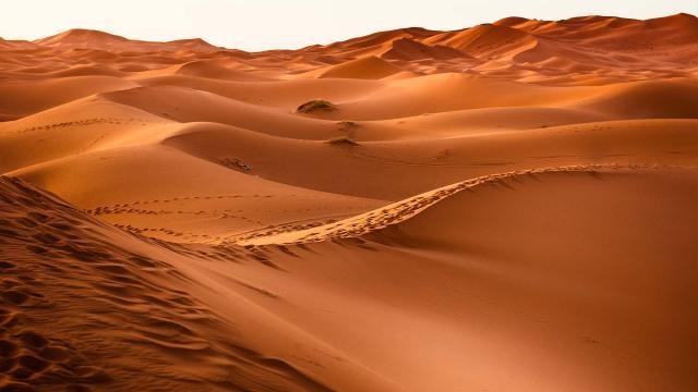 galerie/landscape/desert.jpg